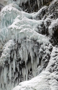 Frozen Falls in the Columbia Gorge
