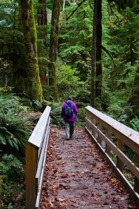 Hiking at Salmon Creek