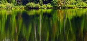 Reflections on Burnt Lake
