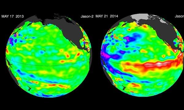 ocean temperature last year