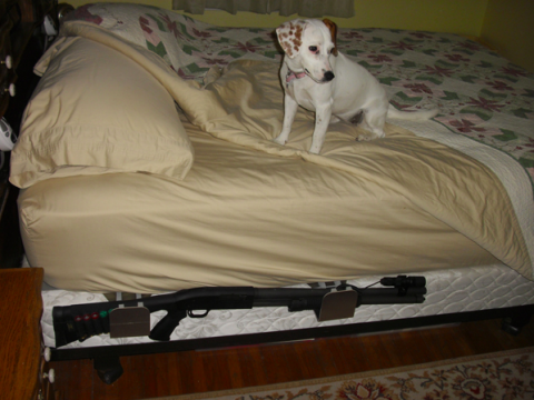 bedside holster